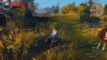 The Witcher 3 Wild Hunt на ноутбуке asus intel i3, gpu 840m | The Witcher 3 intel i3, gpu 840m