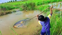Amazing Girls Trap Fish and Snakes With Bamboo Trap - How To Catch Fish With Traditional T