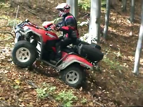 ATV OFFROAD CF MOTO, CAN-AM, Suzuki