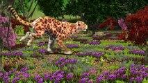 Wild Animals Finger Family Songs | Learn Wild Animals Names and Sounds | Wild Cat Finger Family song