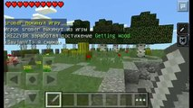 Finecraft The Bridges Minecraft PE Mini-Game Server - 2 - Headshot