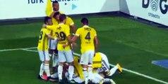 Hasan Ali Kaldirim Goal HD -Fenerbahce3-0Yeni Malatyaspor 15.10