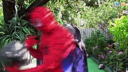 Spiderman POOL PARTY w/ Frozen Elsa Pink Spidergirl & Ironman Superhero