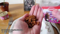 Eating CAT FOOD!!! Kluna Tik Dinner #58 _ ASMR eating sounds no talk klunatik-DsaPqI22mf8