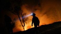 Portugal busca soluciones par combatir los incendios forestales