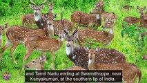 Western Ghats Destination Spot | Top Famous Tourist Attractions Places To Visit In India - Tourism in India