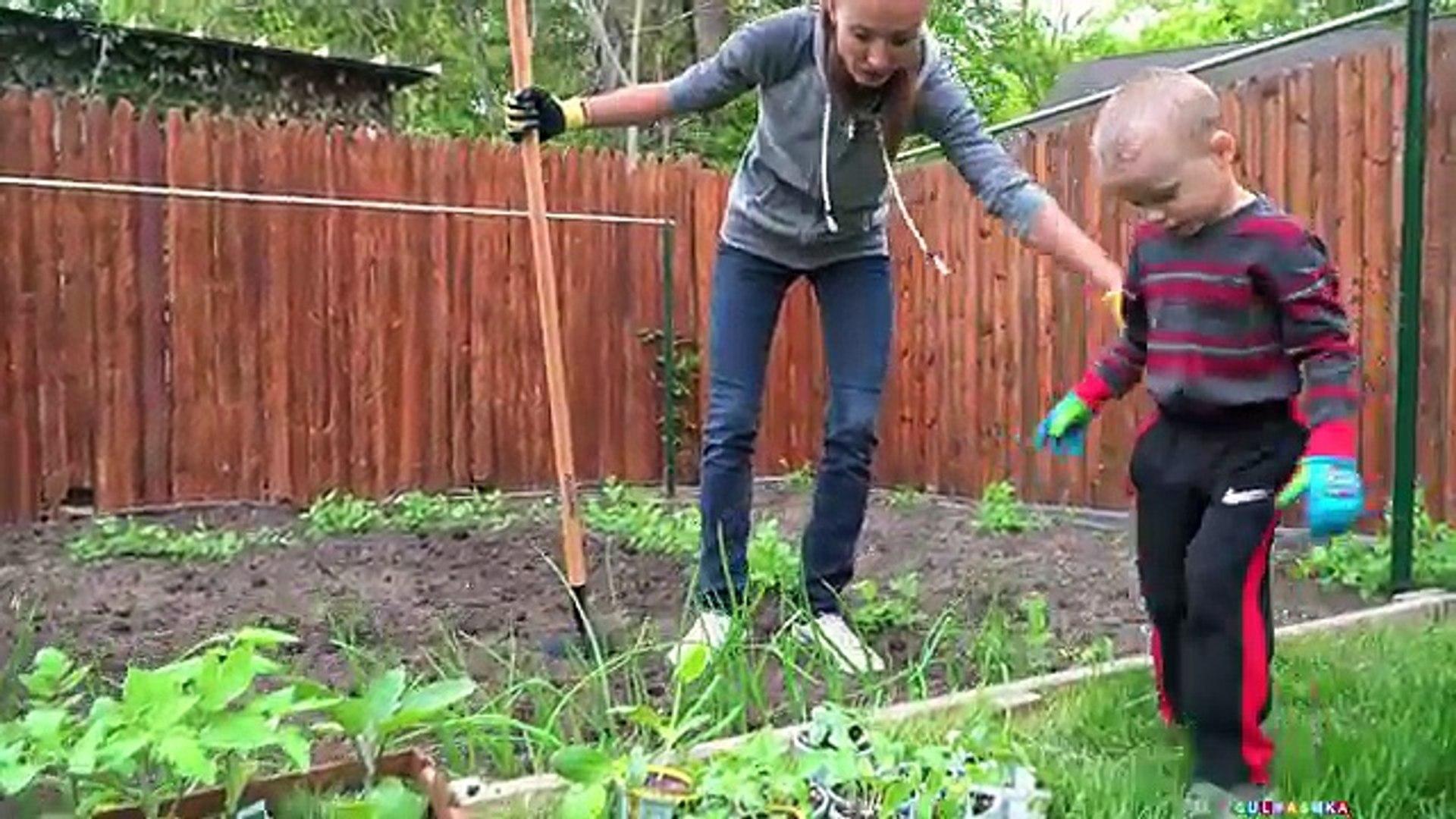 Максим Помогает и Работает на Огороде – Сажает Овощи и Поливает Водичкой Детское Видео Влог Гуляшка