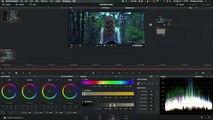 Fantasy Forest // Davinci Resolve Lite 12 Color Grading Tutorial