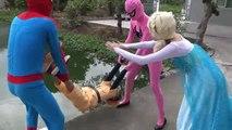 Joker Drop Baby into Lake vs Black Spiderman Frozen Elsa vs Pinks Spidey Girl Funny Videos Super Her