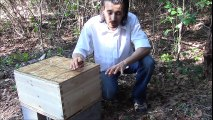 Starting beekeeping with package bees. Best way to hive package bees