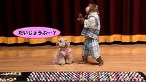 【サルのリアクション芸】足つぼマットはおサルも痛いのか!?(#80)