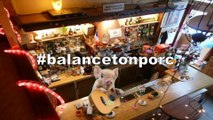 Brèves de comptoir - Opération #balancetonporc