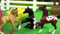 Breyer Horse Movie Video Series - Back Together Part 1 - Friends Mini Whinnies Horses