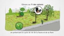 Gestion écologique : Accueillons la biodiversité en ville
