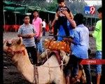 Daman and Diu become hot favourite tourist place to enjoy Diwali vacation - Tv9