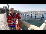 Larangan memancing di Pelabuhan Harbour - NET5