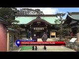 Pesona Keindahan Bunga Plum Di Jepang - NET12