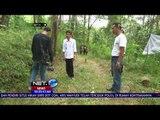 Elang Garuda Dilepasliarkan di Area Hutan Gunung Wilis - NET24