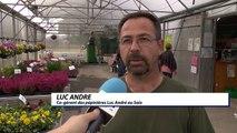 D!CI TV : aux pépinières Luc André du Saix, la culture s'est invitée le temps d'un festival