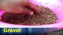 How to Make Bonsai soil for Beginners | Bonsai Soil Tips | Bonsai Soil in India // Mammal Bonsai