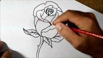 Como Desenhar E Colorir Rosa Passo A Passo видео Dailymotion
