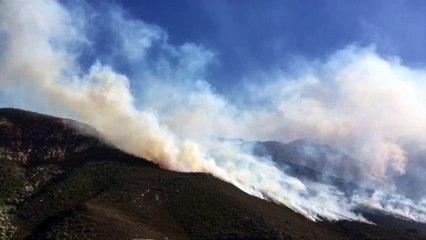VIDÉO. Plus de 300 ha partent en fumée en Balagne