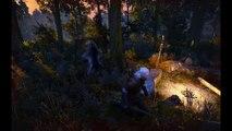 The Witcher 3 Wild Hunt en una RX VEGA 64