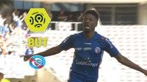 But Nuno DA COSTA (49ème) / OGC Nice - RC Strasbourg Alsace - (1-2) - (OGCN-RCSA) / 2017-18