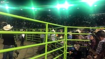 Wrecks, Beer, Tacos , BeanDOZER!! Mexicos Most Dangerous Bull!! Killer