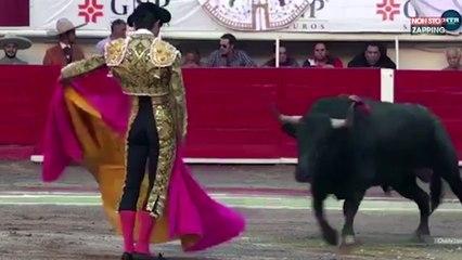 Un torero chargé et gravement blessé par un taureau en pleine corrida (vidéo)