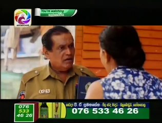 Hara Kotiya 23/10/2017 - 209