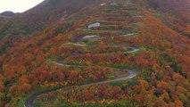 Descente en longboard de 69 virages d'une route de montagne au Japon à plus de 80km/h !