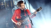 Harry Styles Was Groped By A Fan During A Performance And Twitter Is Appalled And More News
