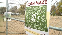 Woman Says Stranger at Corn Maze Attacked Her When She Refused to Kiss Him