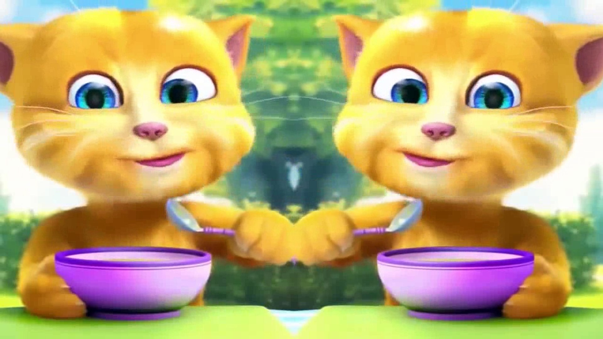 Cute Kitten| Soonmain | Video Kid