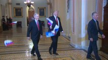 Russian Flags Thrown At President Trump Ahead Of Capitol Hill Meeting With Senators