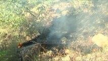 I vënë zjarrin pyjeve, proçedohen penalisht tre persona - Top Channel Albania - News - Lajme