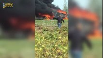 Fighter jet crashed after hitting bird in air