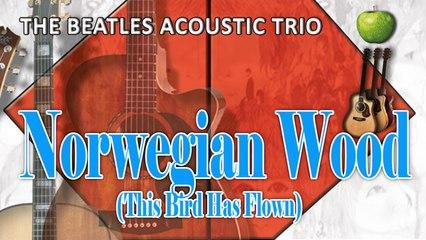 The Beatles Acoustic Trio - Norwegian Wood (This Bird Has Flown)
