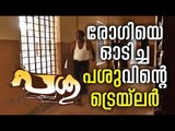 Passu malayalam movie 2017 | MD Sukumaran | Nandhu |