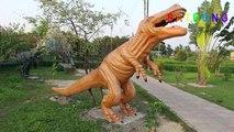 Safari Kingdom _ Bangabandhu Safari Park, Gazipur, Bangladesh _ Safari Kingdom Sarari Park Gazipur-0rxxcC9-KMo