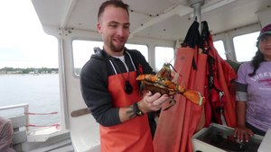 LOBSTERING AND BREW BUS TOUR | Portland, Maine