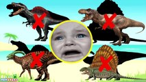 Wrong Shadow Dinosaurs! Learning Jurassic Dinosaurs Names Sounds Triceratops Dinosaurs learn Rex