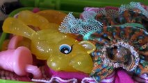 Пинки Пай и Флаттершай на море! 1-я серия! Май Литл Пони мультик с игрушками от Kiwi Show