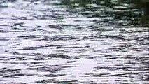 村上マヨネーズのツッコませて頂きます 5月12日 170512 youtube
