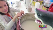 Pet Shark Cooked on Stove by Accident, Feeding Pet Shark Sushi, Shark Gets Cooked Prank