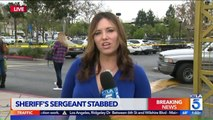 Deputy Stabbed Responding to Man With Knife at Hobby Lobby in California