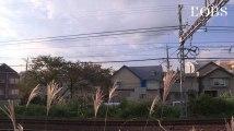 Neuf cadavres découpés dont 2 décapités découverts dans une maison de Tokyo