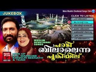 New Malayalam Mappila Album Songs | പാടി ബിലാലെന്ന പൂങ്കുയിൽ | Malayalam Mappila Songs