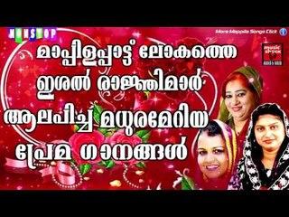 മാപ്പിളപ്പാട്ടിലെ മധുരമേറിയ ഗാനങ്ങൾ | Best Collection Songs | Kannur Zeenath |Rahana|Vilayil faseela